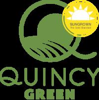 quincygreen-logogreen_sun