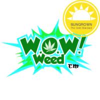 jg-logo-wowweed_sun